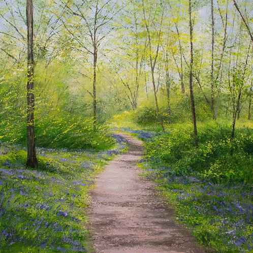 Bluebell Path II