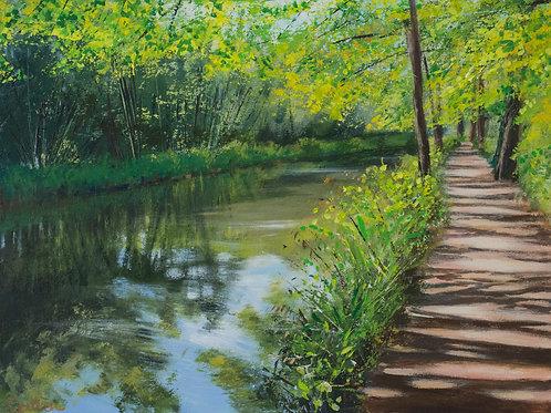 Dappled Light, Beside the Canal