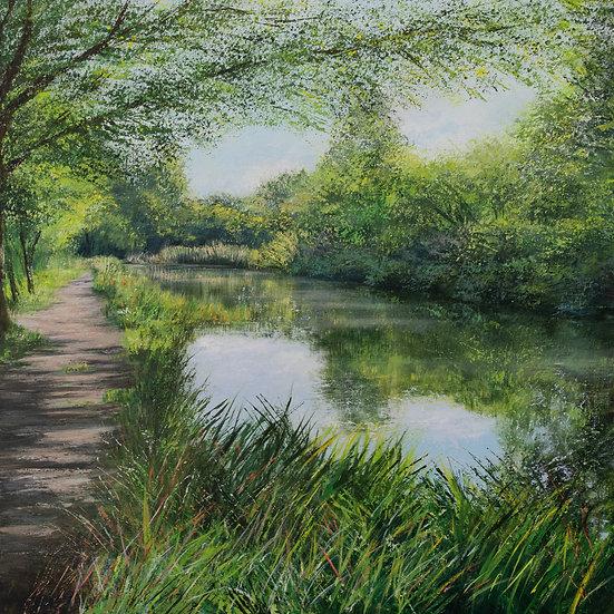 Canal Walk, August