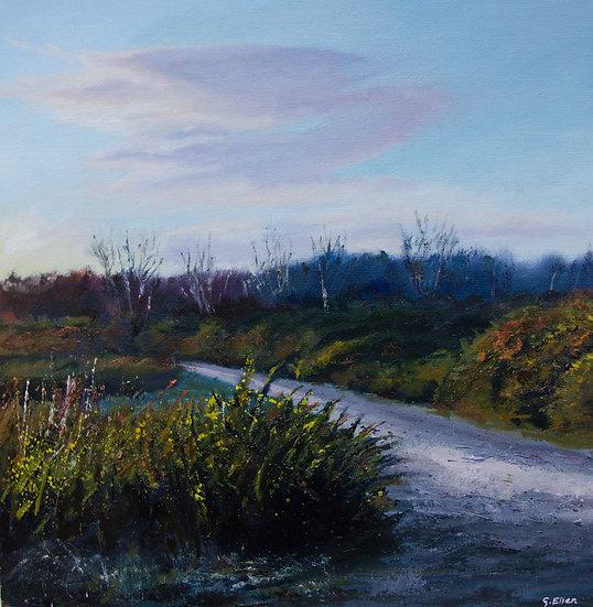 Dusk on the Common, Ludshott
