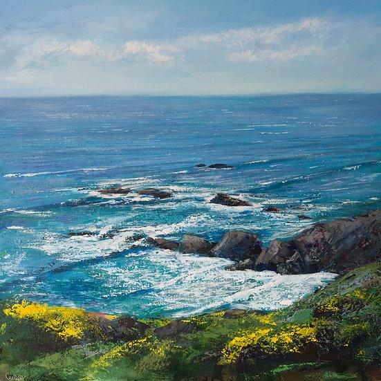 Gorse Cliffs, Sandymouth