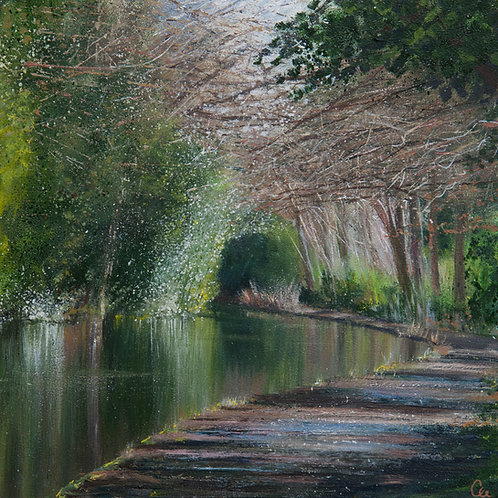 Under the Canopy, Basingstoke Canal
