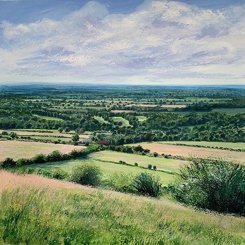 Summer Upon the Surrey Hills