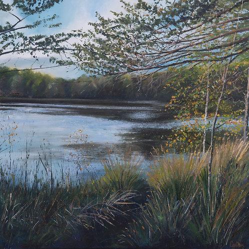 Early Autumn, Lakeside