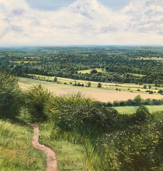 Through the Surrey Hills