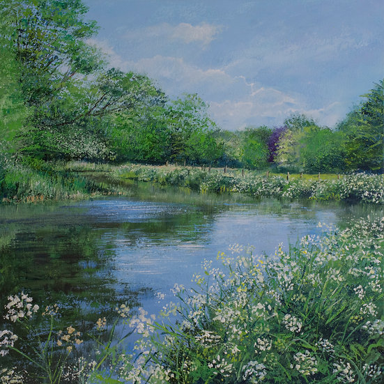 Cowparsley, River Wey