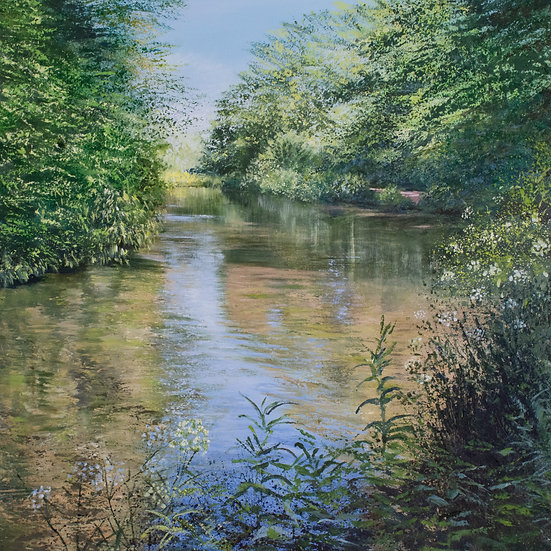 Summer on the Itchen