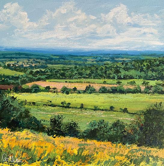 Summer Fields, Box Hill