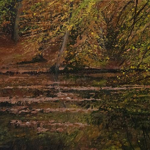 Floating Leaves, Waggoner's Wells