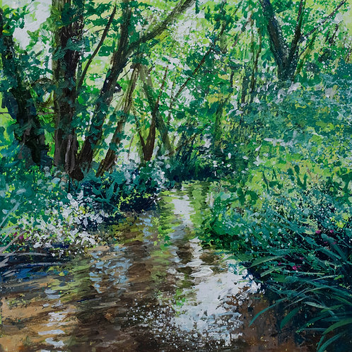 In the Shallows of the Tillingbourne