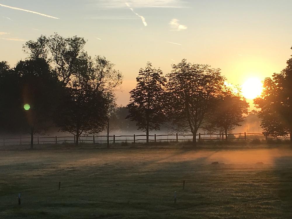 Sunrise at Loseley Park, Surrey