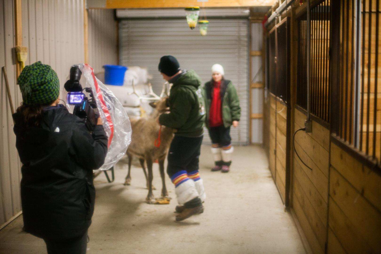 Reindeer farmers, Kenosha