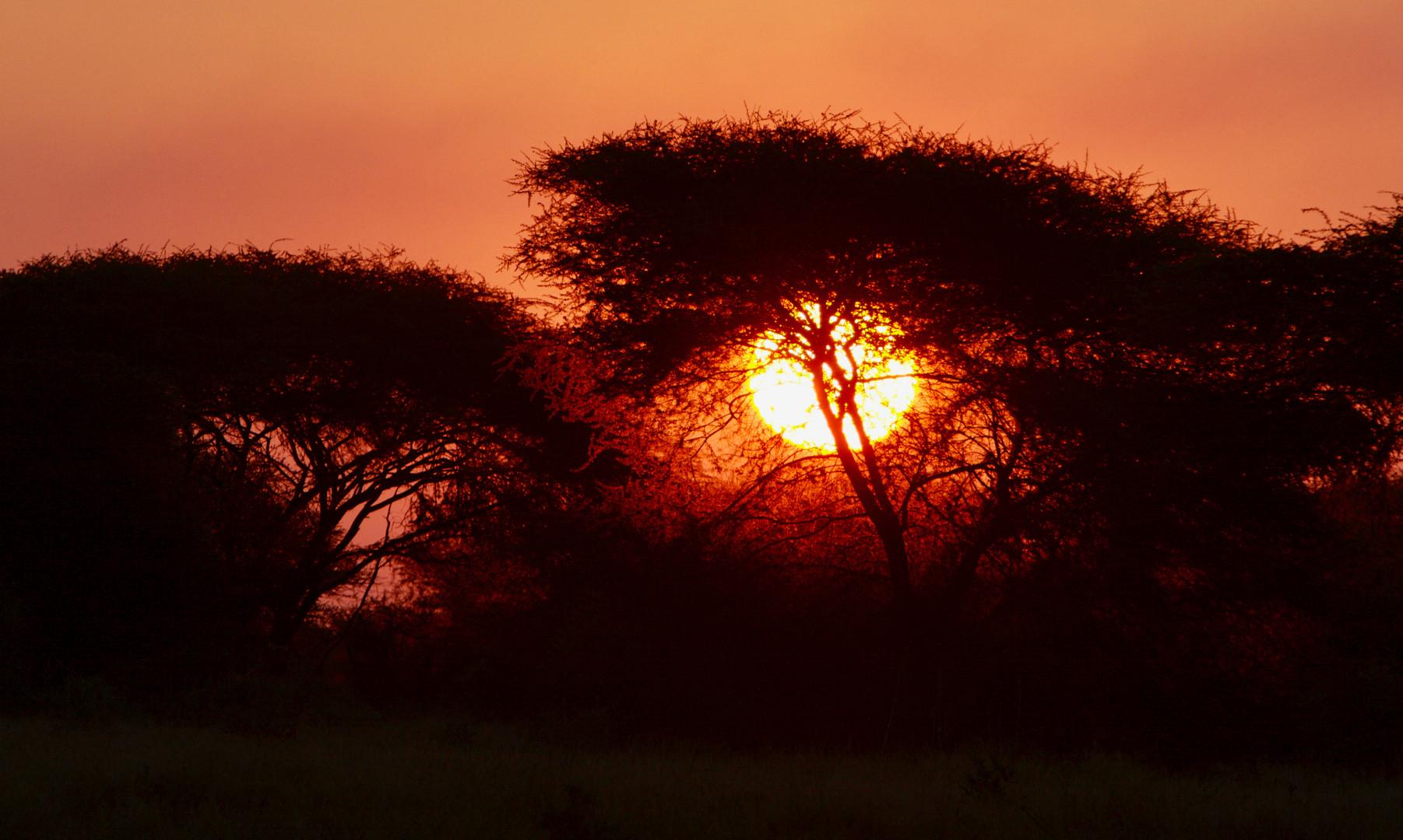 Sunset at Malilangwe