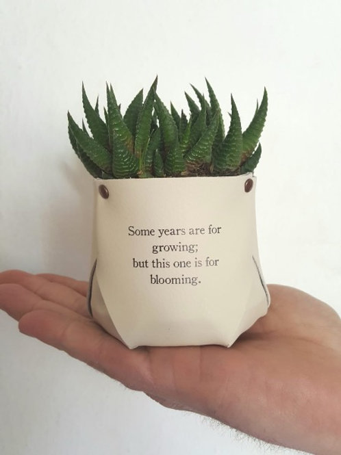 planters mini leather pots with quotes