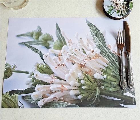 Tableart Disposable Placemats - Wild Dagga