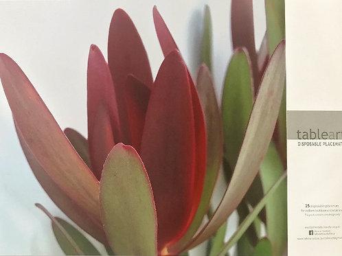 Disposable Placemats- Safari sunset cone bush