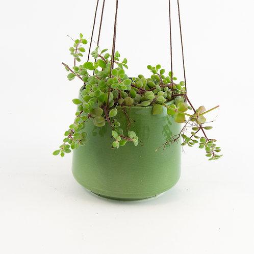 Ceramic Green Hanging Pot