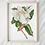 Magnolia-Art-print-woodka-interiors