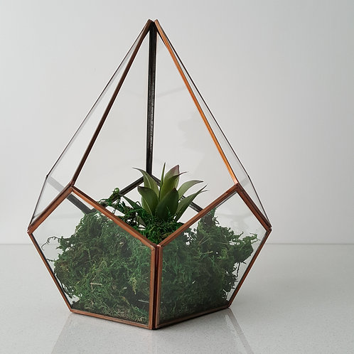 TERRARIUM BOX ROSEGOLD WOODKA INTERIORS 30X23CM
