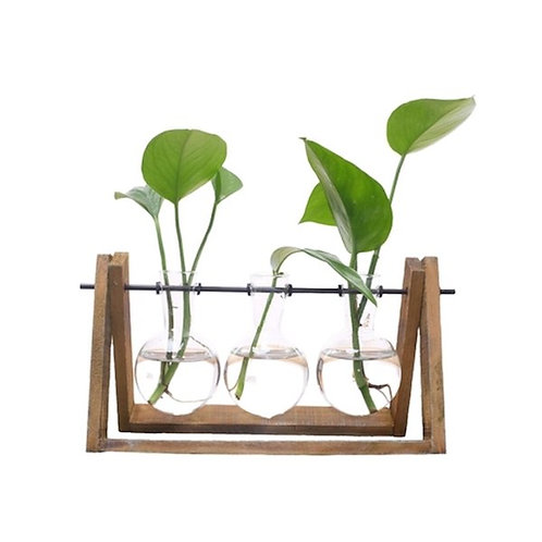 Three Glass Vase on Wooden Stand
