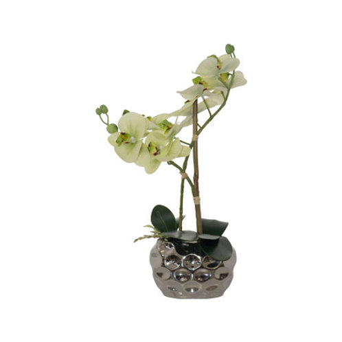 Artificial Green Orchid  Flower in silver pot