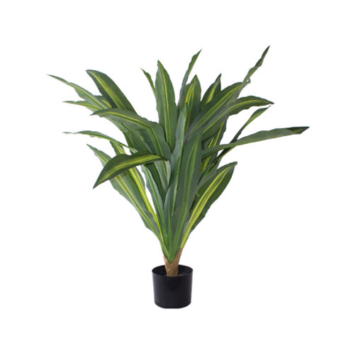 Artificial Dragon Plant in Pot 80cm