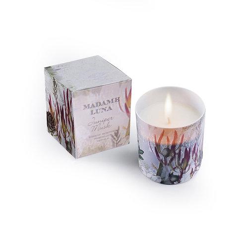 Porcelain Candle - Botanical - Juniper Musk