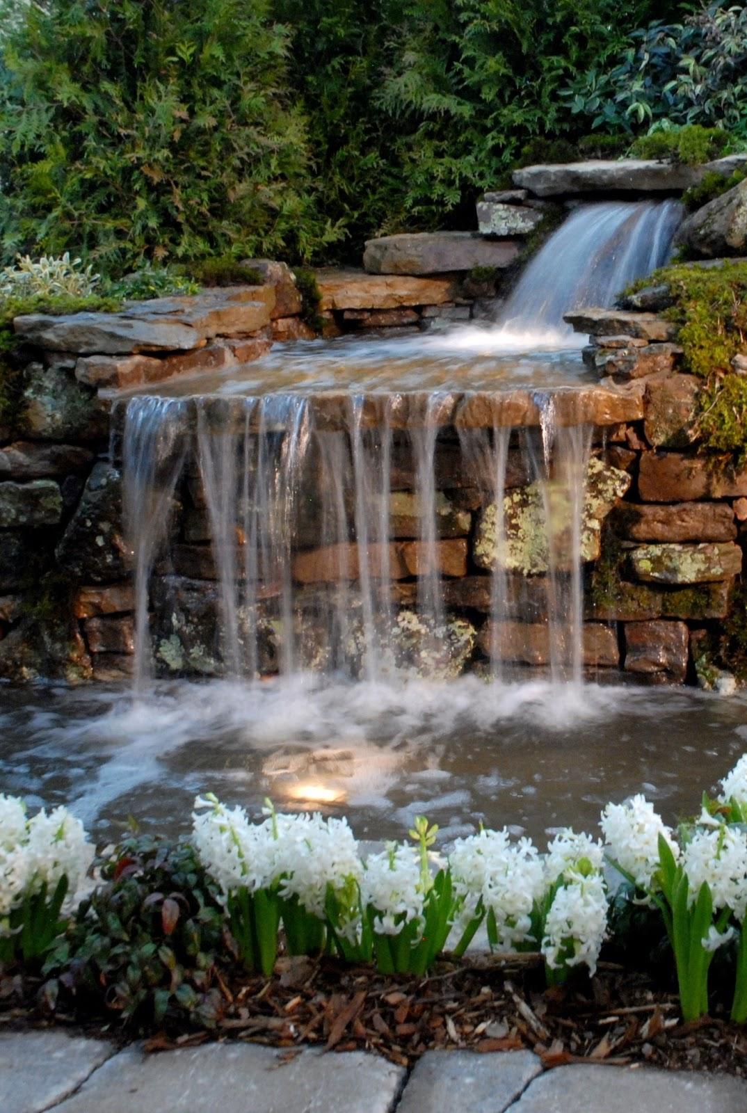 cascada y estanque