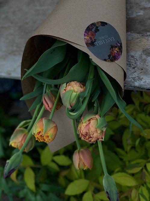 Fresh Tulips 8 Stems