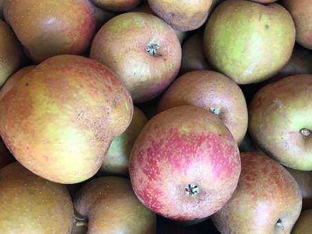 Boskoop Äpfel und Kartoffeln
