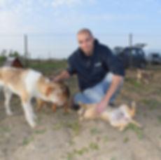 ANIMARIS Tierschutzeinsatz in Rumänien