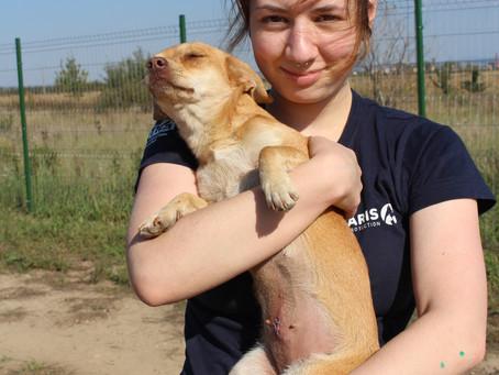 Kurzer Besuch und viele Eindrücke aus Rumänien