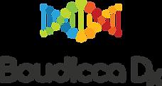 BoudiccaDx_logo.png