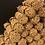 Thumbnail: Fagots de bois