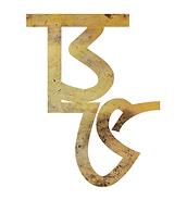 BS Logo FINAL BGLetter White.png