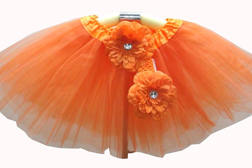 T301 Girls' Tutu with Head Band