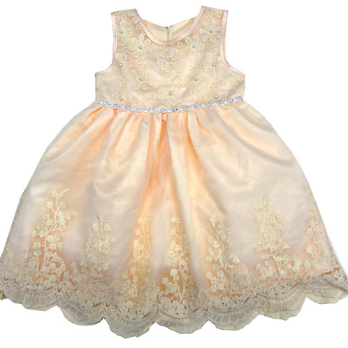 85-202T Toddler Girls' Tulle Embroidered  Dress
