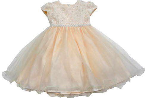 72-105 Infants'  Tulle  Embroidered  Dress