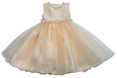 72-102T Toddler Girls' Tulle  Embroidered  Dress