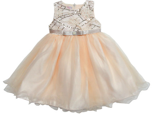74-487T Toddler Girls' Tulle  Embroidered  Dress