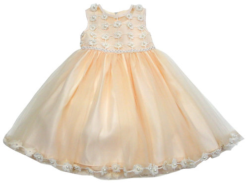 72-100X Girls' (4-6X) Tulle  Embroidered  Dress