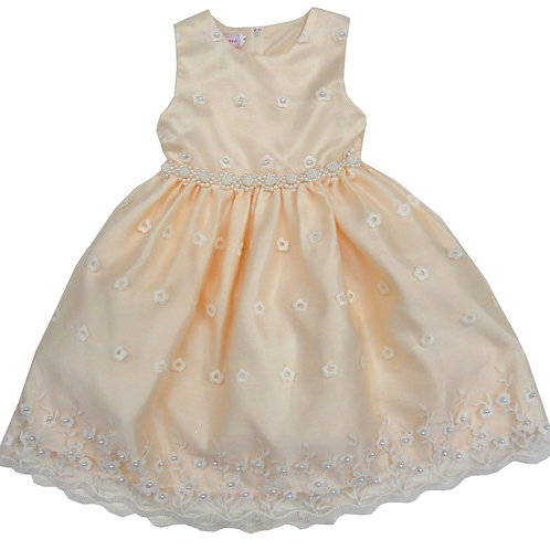 72-108L Girls' (8-14) Tulle  Embroidered  Dress
