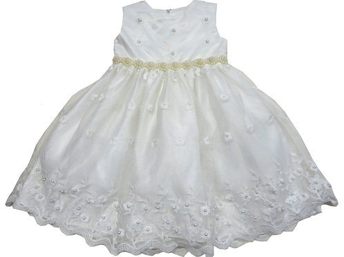 72-108X Girls' (4-6X) Tulle  Embroidered  Dress