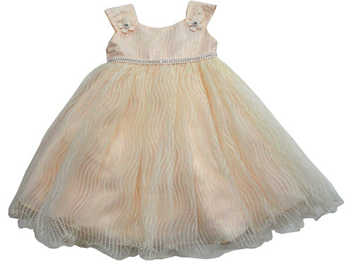 84-612T Toddler Girls' Tulle  Embroidered  Dress