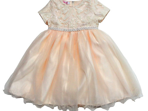 74-473T Toddler Girls' Tulle  Embroidered  Dress