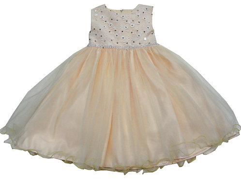 72-106T Toddler Girls' Tulle  Embroidered  Dress