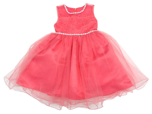 85-201T Toddler Girls' Tulle Embroidered  Dress