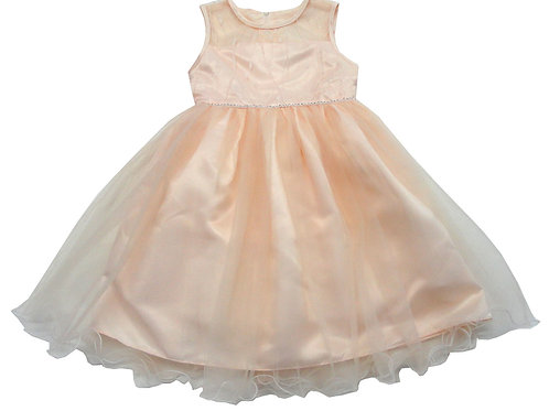 84-601T Toddler Girls' Tulle  Embroidered  Dress