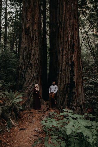MOODY_MOUNT_TAM_ADVENTURE_CAMPING_ENGAGE