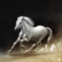 """Goodbye horses I'm flying over you"" by artist Wade Grergory Clark"